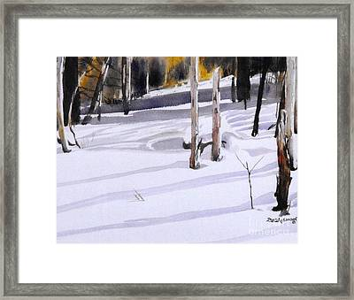 Shadow Dancing Framed Print by David Ackerson