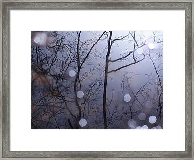 Shadow Forest Framed Print