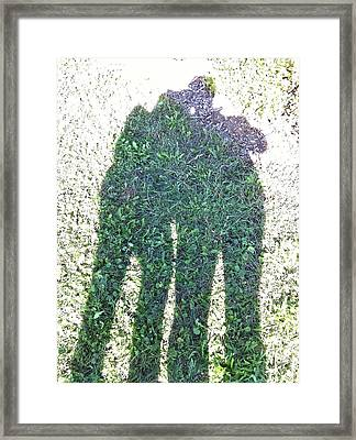Framed Print featuring the photograph Shadow In The Meadow by Wilhelm Hufnagl