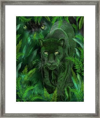 Shadow Of The Panther Framed Print by Carol Cavalaris