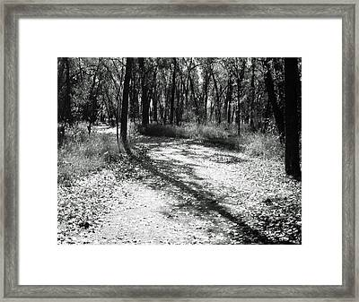 Framed Print featuring the photograph Shadow Path by Allan McConnell