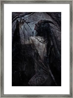 Shadow Veil Framed Print