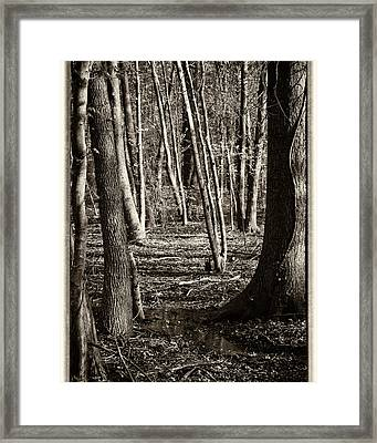 Shadowland Framed Print by Michael Putnam