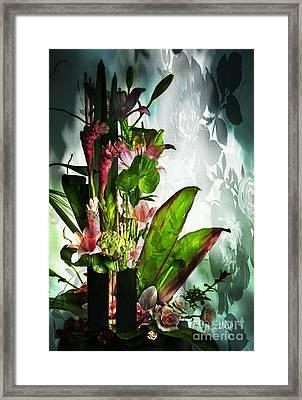 Shadowplay Framed Print by Maria Urso