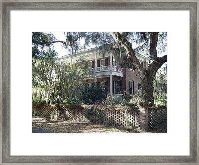 Shadows And Moss Framed Print by Richard Marcus