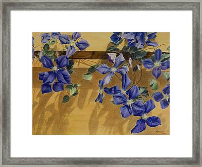 Shadows Dancing Framed Print by Nik Helbig