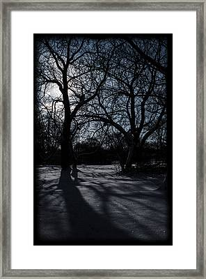 Shadows In January Snow Framed Print
