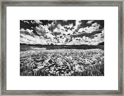 Shadows In The Afternoon II Framed Print by Jon Glaser
