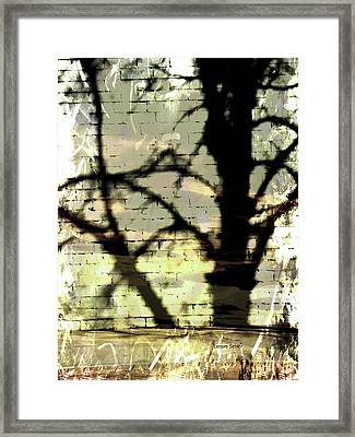 Shadows In The Mist Framed Print
