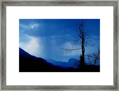 Shadows In The Rain  Framed Print by John Poon