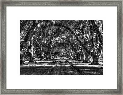 Shadows Of Time Tomotley Plantation Live Oak Art Framed Print by Reid Callaway