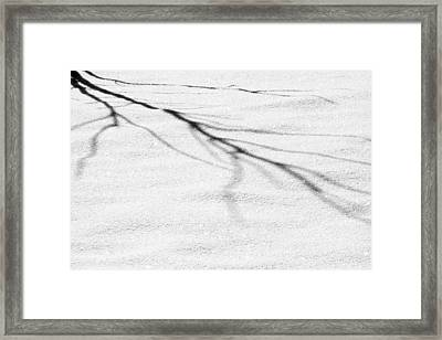 Shadows Of Winter Framed Print