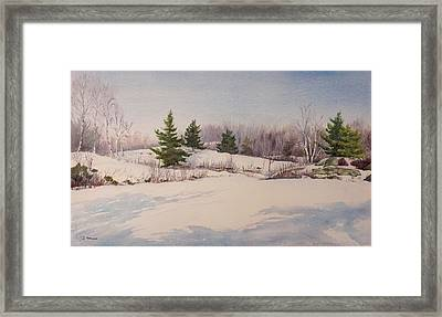 Shadows On Snow In The Canadian Shield  Framed Print by Debbie Homewood