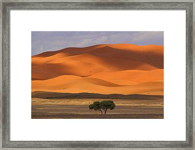 Framed Print featuring the photograph Shadows On The Dunes by Ramona Johnston