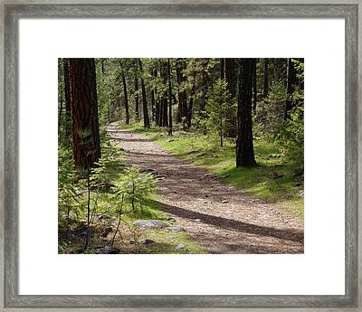 Framed Print featuring the photograph Shadows On The Path by Ben Upham III