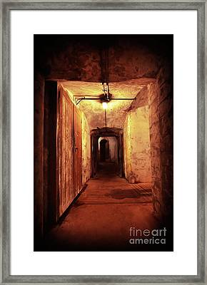 Shadows Framed Print by Svetlana Sewell