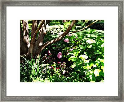 Framed Print featuring the photograph Shadows Through The Garden by Glenn McCarthy Art and Photography