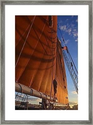Shadowy Sails Boston Harbor Sloop Boston Ma Framed Print