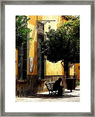 Shady Bench Framed Print by Mexicolors Art Photography