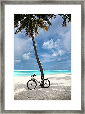 Shady Bicycle Framed Print by Sean Davey
