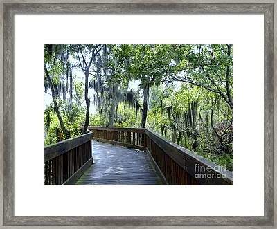 Shady Boardwalk Framed Print