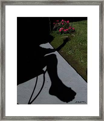 Shady Bunion  Framed Print