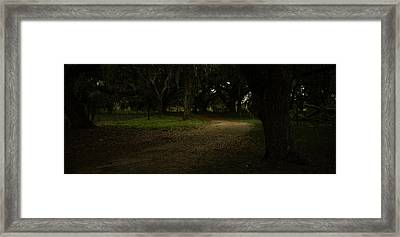 Shady Drive Framed Print by Robert Swinson