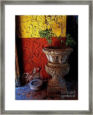 Shady Foyer Framed Print