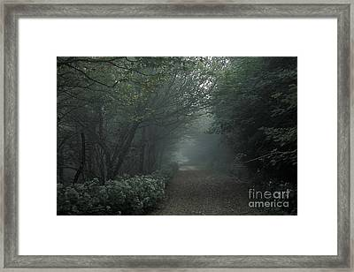 Shady Lane Framed Print by Stan and Anne Foster