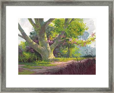 Shady Oasis Framed Print