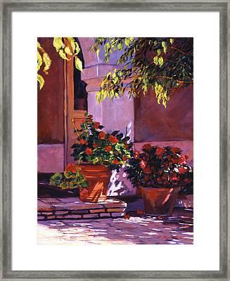 Shady Patio Framed Print by David Lloyd Glover