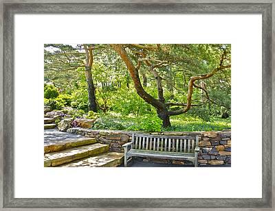 Shady Reststop Framed Print by Robert Joseph