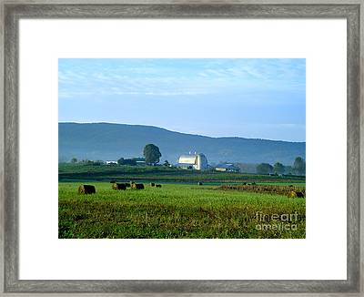 Shady Valley Farm Framed Print
