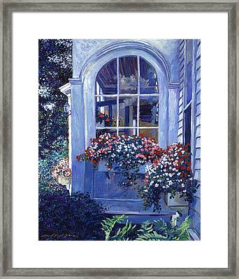 Shady Window Boxes Framed Print by David Lloyd Glover