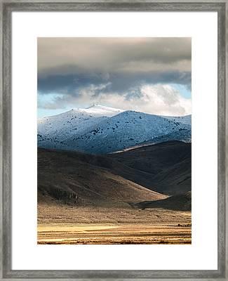 Shaffer With Snow Framed Print