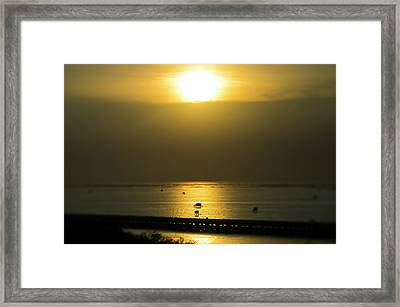 Shaft Of Gold Framed Print