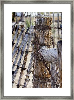 Framed Print featuring the photograph Shaggy Fence Post by Phyllis Denton