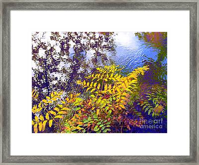 Shake It Off Framed Print by Sybil Staples