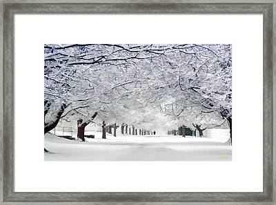 Shaker Winter Walkway Framed Print