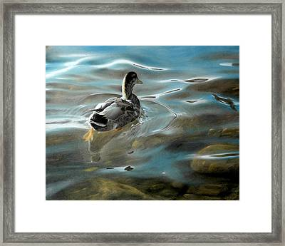 Shallow Reflections Framed Print