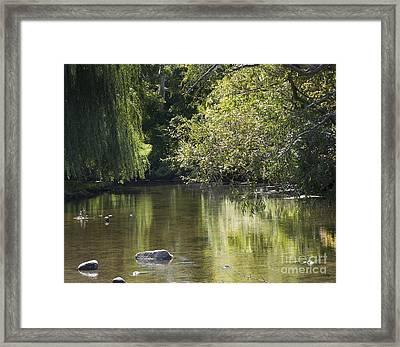 Shallow River Framed Print