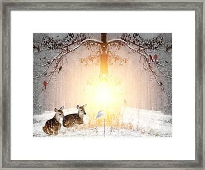 Shalom Framed Print by Bill Stephens