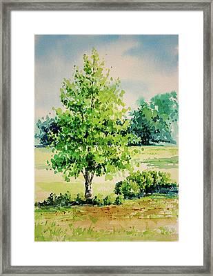 Shalom Park Watercolor Framed Print