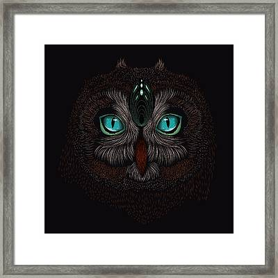 Shaman Spirit Owl Framed Print