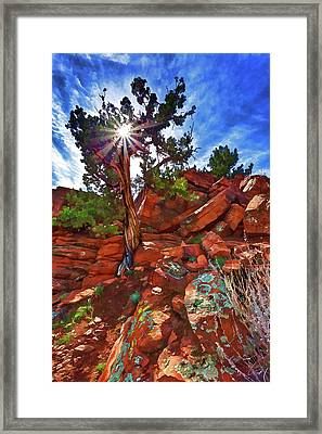 Shaman's Dome Juniper Framed Print
