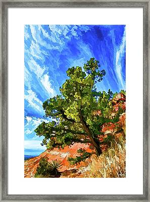 Shaman's Sentry Framed Print by ABeautifulSky Photography