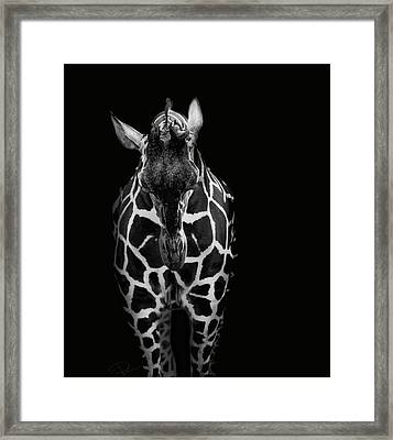 Shame On Me Framed Print by Paul Neville
