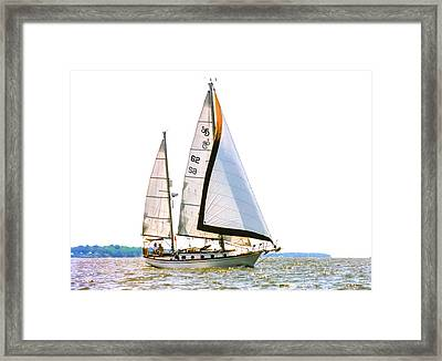 Shannon 38 Kittiwake On Chesapeake Bay Framed Print