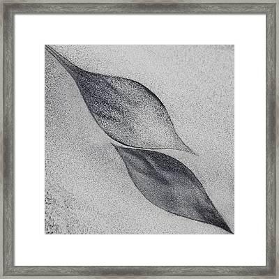 Shaped By A Creative Wind Framed Print