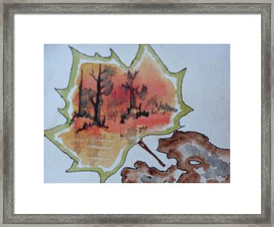 Shapes Of Nature Framed Print by Warren Thompson